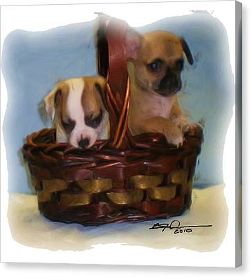 Pups In A Basket Canvas Print by Beverly Johnson