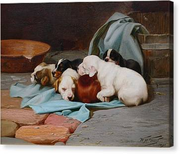 Pups Slumber Canvas Print by MotionAge Designs