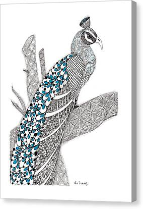 Purdy Peacock Canvas Print by Paula Dickerhoff