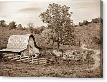 Pure Arkansas In Sepia Canvas Print by Gregory Ballos