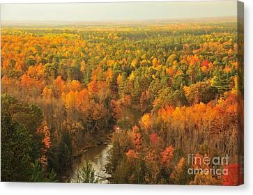 Pure Michigan Autumn Canvas Print