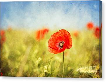 Hannes Cmarits Canvas Print - Pure Summer Feelings by Hannes Cmarits