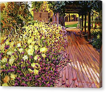 Purple And Gold Canvas Print by David Lloyd Glover