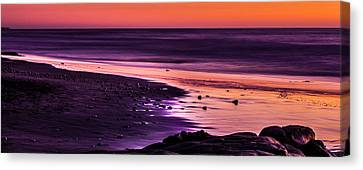 Purple Beach Canvas Print