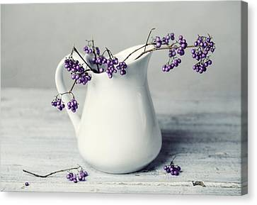 Purple Berries Canvas Print by Nailia Schwarz