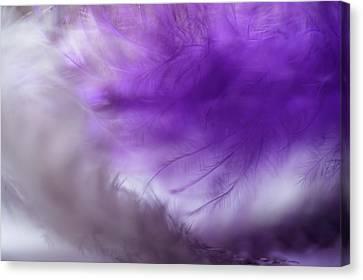 Purple Cloud. Angel Series Canvas Print