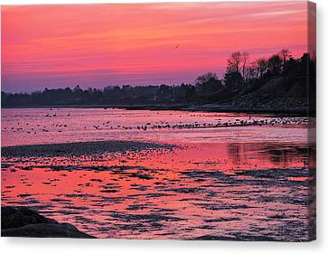 Purple Dawn Canvas Print by Kim Lessel