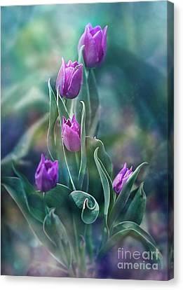 Purple Dignity Canvas Print by Agnieszka Mlicka