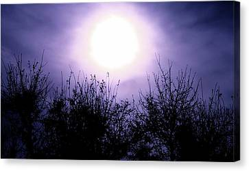 Purple Eclipse Canvas Print by Greg Joens