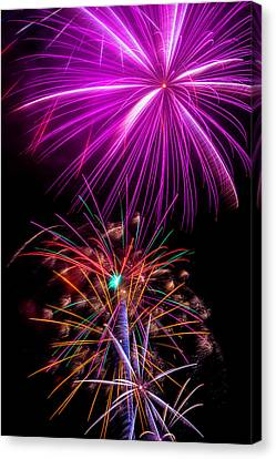 Purple Fireworks Canvas Print