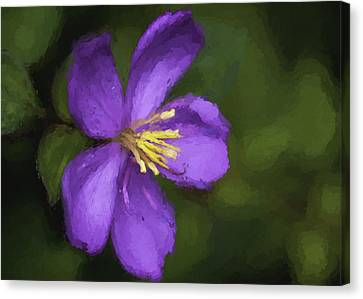 Canvas Print featuring the photograph Purple Flower Macro Impression by Dan McManus