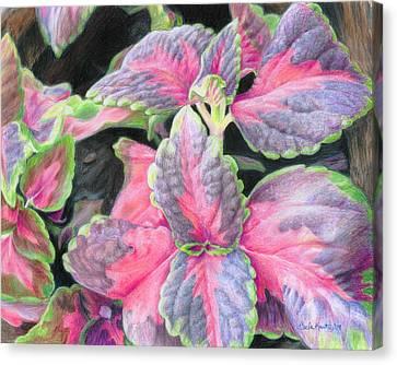 Purple Flowering Plant Canvas Print