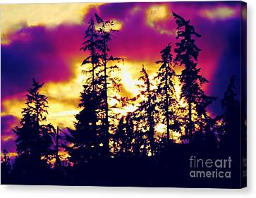 Canvas Print featuring the photograph Purple Haze Forest by Nick Gustafson