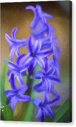 Purple Hyacinths Digital Art Canvas Print by Terry DeLuco