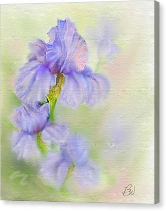 Canvas Print featuring the painting Purple Iris by Bonnie Willis