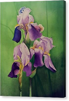 David Hoque Canvas Print - Purple Iris' by David Hoque