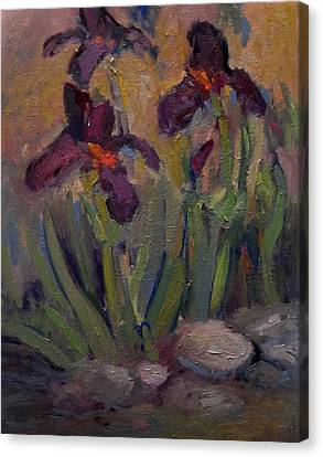 Purple Iris In Shade Canvas Print by R W Goetting