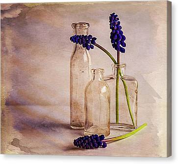 Purple Canvas Print by Mary Hone