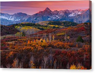 Purple Mountains Majesty Canvas Print by Tim Reaves