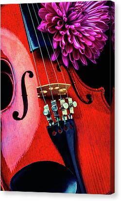 Purple Mum And Violin Canvas Print by Garry Gay