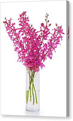 Purple Orchid In Vase Canvas Print by Atiketta Sangasaeng