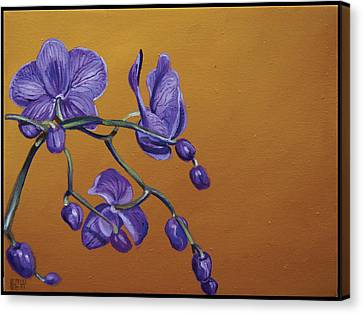 Purple Orchids Canvas Print by Edward Williams