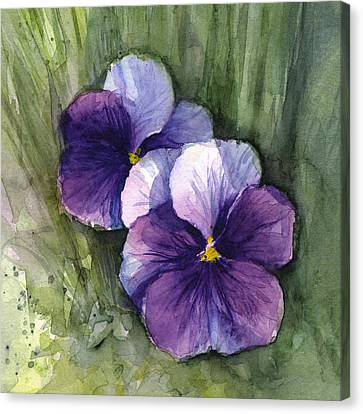 Purple Pansies Watercolor Canvas Print by Olga Shvartsur