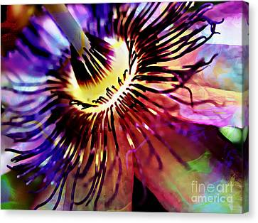 Purple Passion Canvas Print by Jolanta Anna Karolska