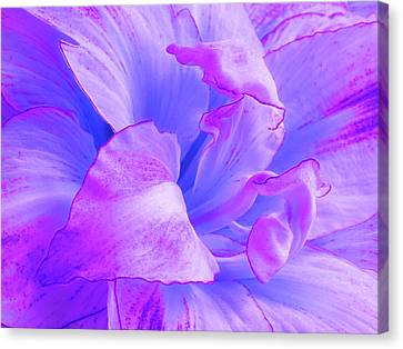 Purple Petals Abstract Canvas Print by Gill Billington
