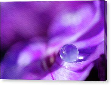 Purple Rain Drop Canvas Print