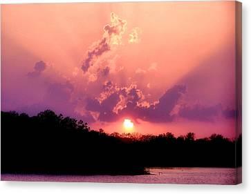 Purple Rain Canvas Print by Karen M Scovill