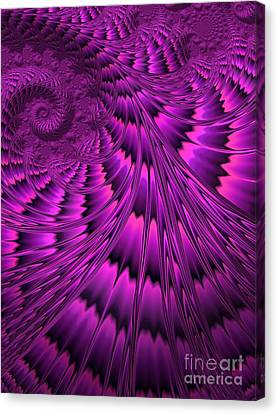 Purple Shell Canvas Print by John Edwards