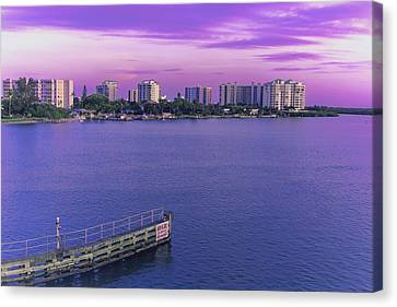 Purple Skies Canvas Print by Michael Frizzell