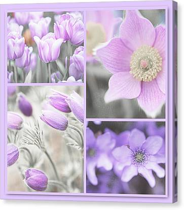 Canvas Print featuring the photograph Purple Spring Bloom Collage. Shabby Chic Collection by Jenny Rainbow