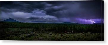 Canvas Print featuring the photograph Purple Strikes by Cat Connor