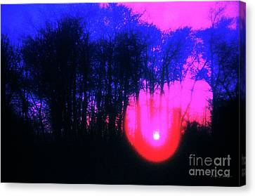 Canvas Print featuring the photograph Purple Sunset by Craig J Satterlee