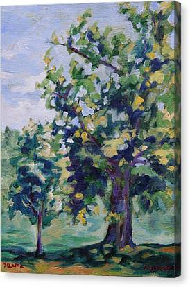 Purple Tree Canvas Print by Andrew Danielsen