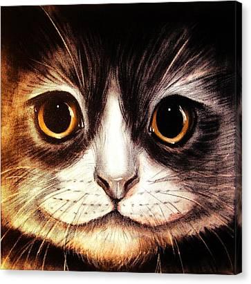 Pussycat Canvas Print by Anastasis  Anastasi
