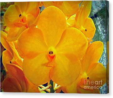 Put On A Happy Face Yellow Orchids Canvas Print by Sue Melvin