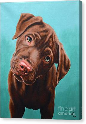Puzzled Puppy Canvas Print