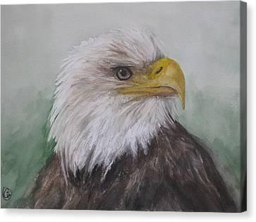 Pyrague Eagle Canvas Print by Annie Poitras