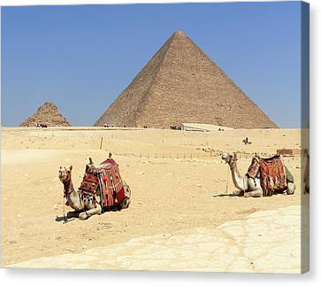 Canvas Print featuring the photograph Pyramids Of Giza by Silvia Bruno