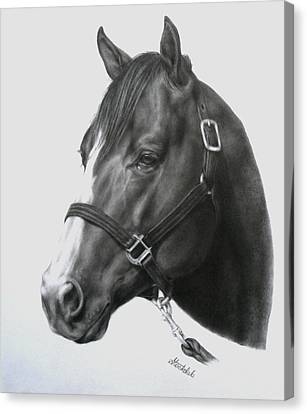 Quarter Horse Portrait Canvas Print by Margaret Stockdale