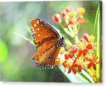 Queen Butterfly Canvas Print by Inspirational Photo Creations Audrey Woods