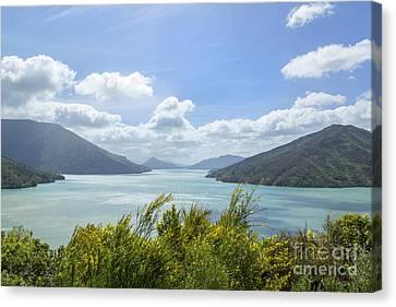 Queen Charlotte Sound, New Zealand Canvas Print