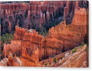 Queens Garden Overlook - Bryce Canyon Np Canvas Print