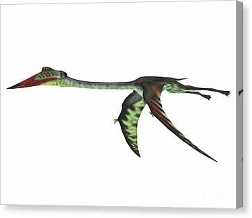 Quetzalcoatlus Wings Down Canvas Print