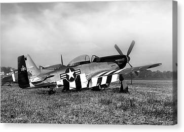 Vintage Air Planes Canvas Print - Quick Silver P-51 Mustang by Peter Chilelli