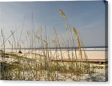 Quiet Beach Canvas Print by John Black