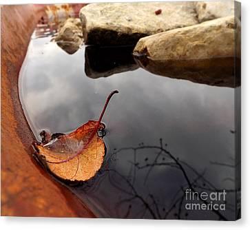 Rain Barrel Canvas Print - Quiet Corners  by Viviana  Nadowski